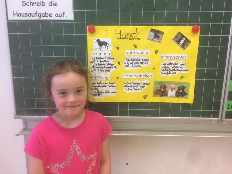 Grundschule Marktleuthen Neuer Lehrplan